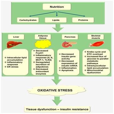 oxidative_stress